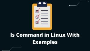 ls Command in Linux With Examples